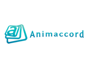 Animaccord Animation Studio